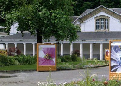 exposition photos fleurs extérieur